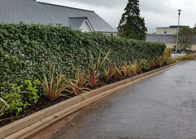 Instant hedging Newton Abbot